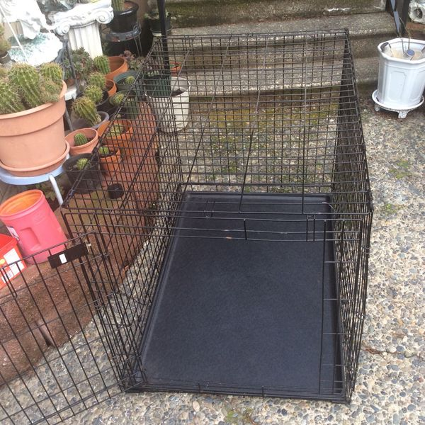 Dog Crate Size L 42inch W 28 H 30 Price 45$ Pick Up E 72nd Tacoma