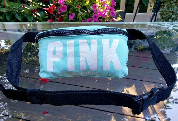 Teal PINK Fanny Pack