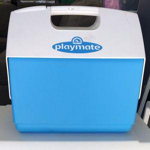 Big Igloo Cooler for Sale in Ramona, CA