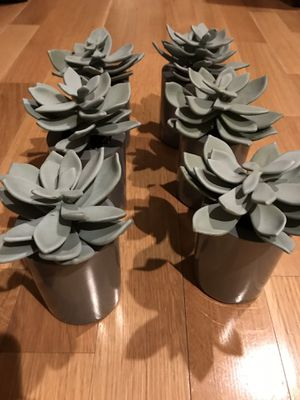 Set of 6 Decorative Succulents! for Sale in Dallas, TX