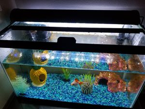 Fish tank for Sale in Puyallup, WA