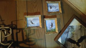 Eagle paintings for Sale in Durand, WI