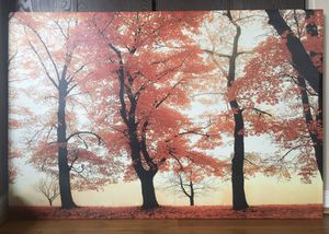 Fall-Themed Picture Frame for Sale in Sterling Heights, MI