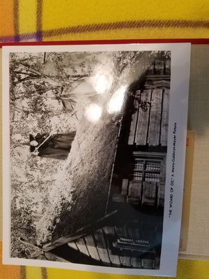 Original black and white print Wizard of Oz witch on house for Sale in New Port Richey, FL