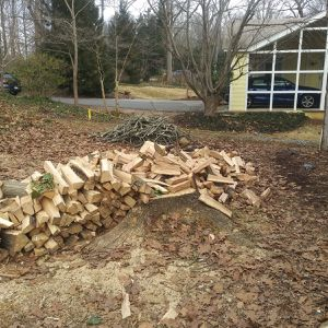 SELLING WHITE AND RED OAK WOOD for Sale in Oxon Hill, MD