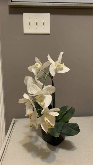 Realistic looking Orchid for Sale in Lawrenceville, GA