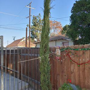 Cypress for Sale in Bakersfield, CA