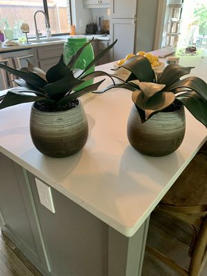 Potted Succulent Set Artificial for Sale in Hurst, TX