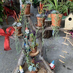 Succulent En Tronko Xgrande Con Duendes for Sale in Downey, CA
