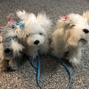 Puppy Friends for Your Little Girl for Sale in Virginia Beach, VA