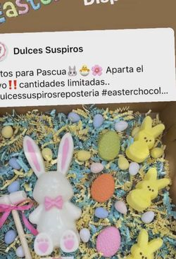 Breakable Bunny!! Accept Reservation for Sale in Hialeah,  FL