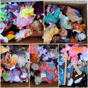 Assorted Beenie Babies for Sale in Surprise, AZ
