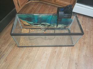 20 gallon long aquarium w filter for Sale in Alexandria, VA
