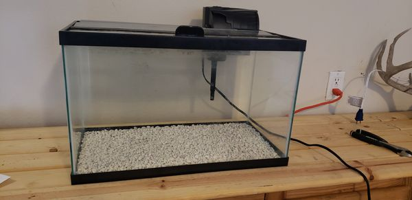 10 gallon aquarium. Really good condition