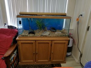 Fish Tank 100 Gal for Sale in Poway, CA