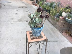 Rustic centerpiece with succulent plant for Sale in Bloomington, CA