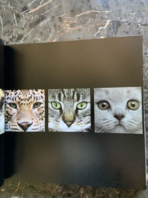 Coffee table book for Sale in Spring Valley, CA