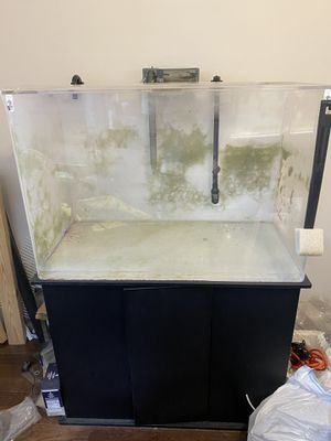 65 gallon ACRYLIC aquarium with Stand and Filter for Sale in Queens, NY