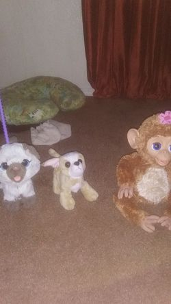 Another animal lot for Sale in Phoenix,  AZ