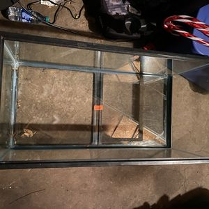 40 Gallon Breeder Tank With A Screen Lid for Sale in Queens, NY