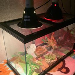Tank for Sale in Chino Hills,  CA