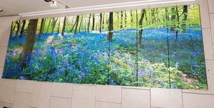 Wall art for Sale in Cliffside Park, NJ