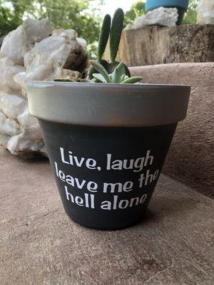 Punny Succulent/Cactus Planters, Succulent, Cactus Indoor Planters for Sale in Rockaway Beach, MO