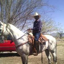 arrendador de caballos for Sale in San Bernardino, CA