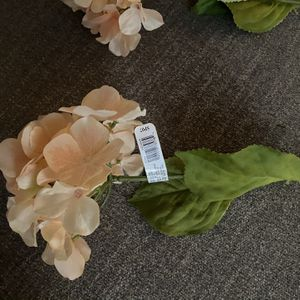 2 Flowers for Sale in Raleigh, NC