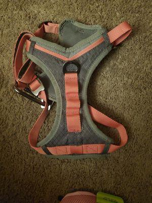 Dog harness for Sale in Denver, CO