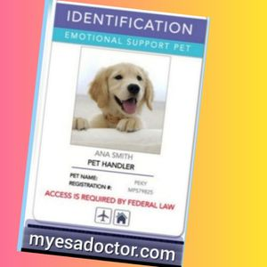 •✓Get ESA ID card ♂️Emotional support for dog🥉No Additional Costs for Sale in Dallas, TX