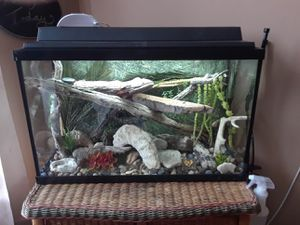 40 gal. Reptile tank for Sale in Lakeside, TX