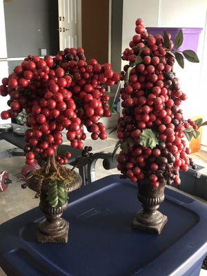 Berry Topiaries for Sale in San Jose, CA