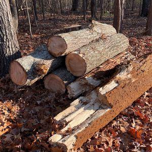 Free Firewood — Oak for Sale in Chapin, SC