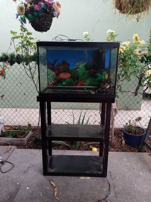 20 gallon fish tank with stand for Sale in Norwalk, CA