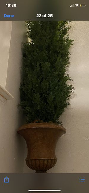 Fake pine tree home decoration about 6ft high for Sale in Las Vegas, NV