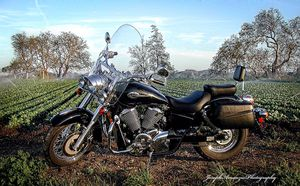 2003 Honda 750 Ace. 13,500 miles. Excellent Condition. for Sale in Paso Robles, CA