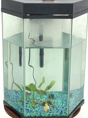 Fish tank for Sale in Durham, NC