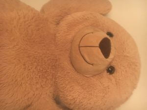 """52"""" 4 ft tall giant stuffed teddy bear super soft for Sale in Baldwinsville, NY"""