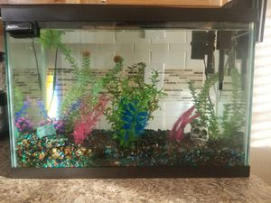 Fish tank and Supplies for Sale in Littleton, CO