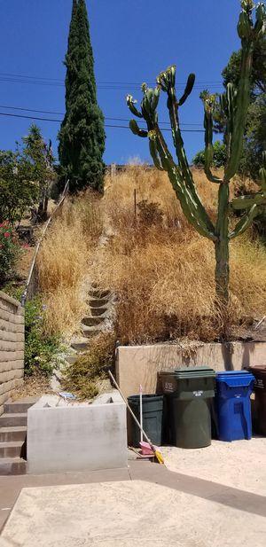 Yard clean ups, gardening maintenance for Sale in Baldwin Park, CA