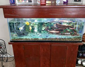 Aquarium for Sale in Menifee, CA
