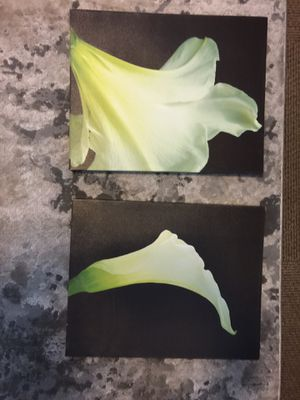 Flower canvass set for Sale in Vancouver, WA