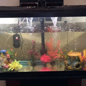 Fish 🐠 Tank 20 Gal for Sale in Tampa, FL