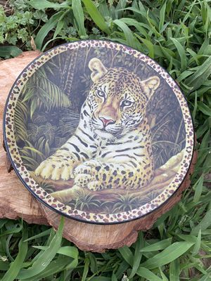 Brand New! Animal print plates for Sale in Dinuba, CA