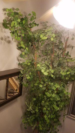 Huge fake tree with pot 12 feet for Sale in Phoenix, AZ