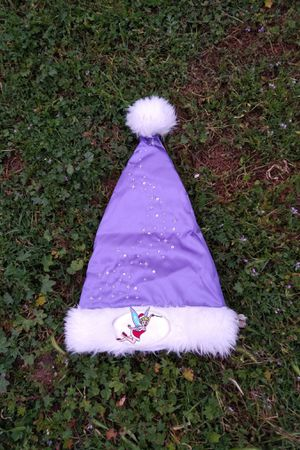 Disney tinkerbell holiday hat for Sale in Los Angeles, CA