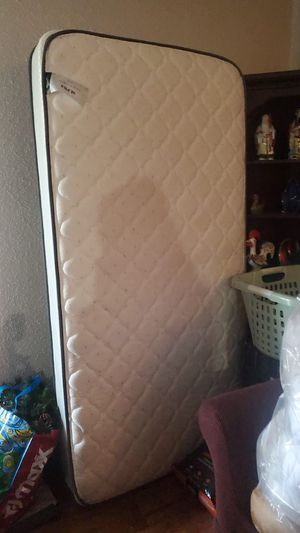 Twin sized mattress + bed spring for Sale in Winter Park, FL
