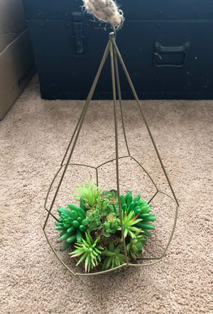 Decor succulents for Sale in Austin, TX