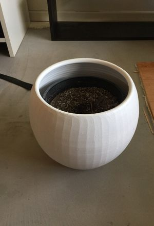 White Plant Pot for Sale in San Francisco, CA